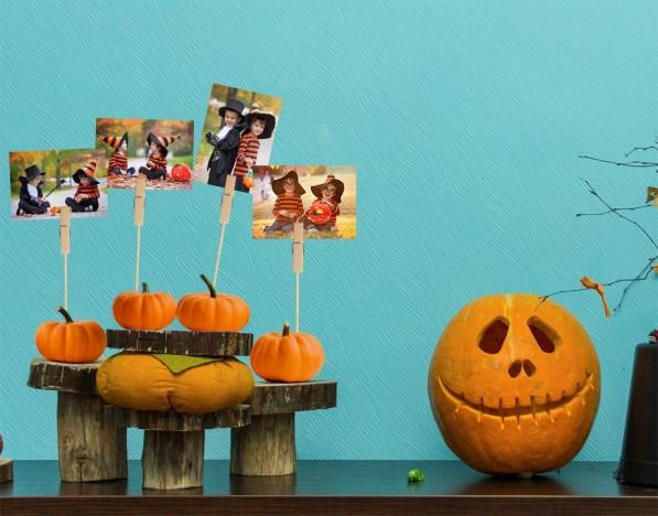 photo-pumpkin-stands
