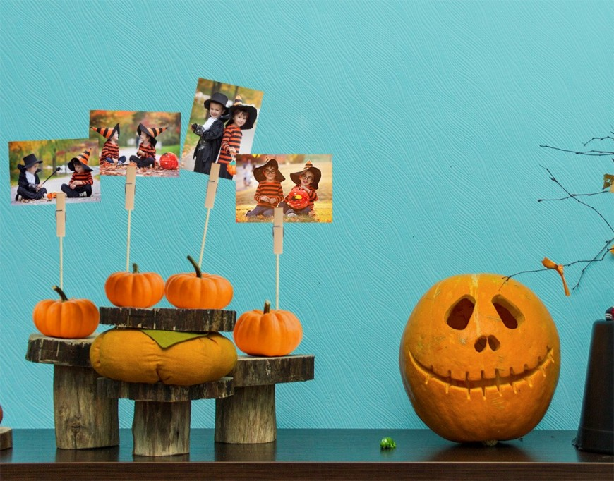 photo-pumpkin-stands